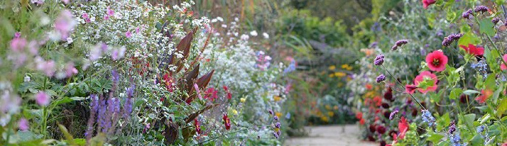 cropped-cropped-Garden-Path.jpg